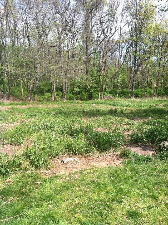A field clear of debris!