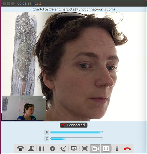 Video call on Jitsi Desktop for Ubuntu